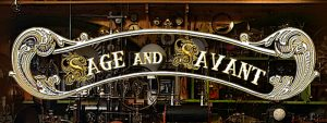 Sage and Savant Season One Synopsis